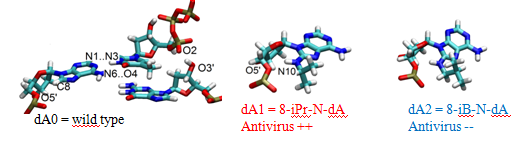 Institut de Chimie de Nice UMR 7272 - Inhibition mechanism